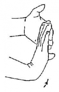 Active and passive Wrist extension