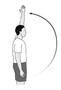 shoulder pain exercises - flexion