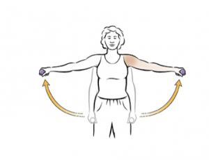 shoulder pain exercises - shoulder abductor