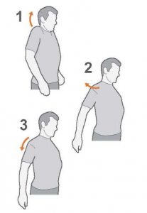 shoulder pain exercises - shoulder circles