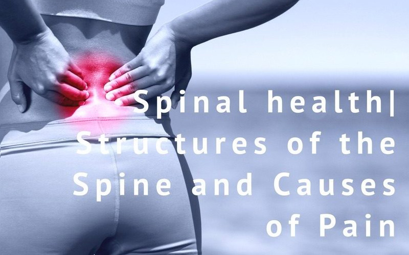 sports massage treatment for back pain