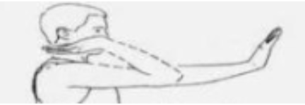 Gliding 2 - Golfers elbow exercises